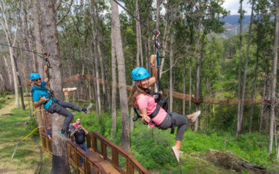 10 Things To Do In Gatlinburg, Tennessee
