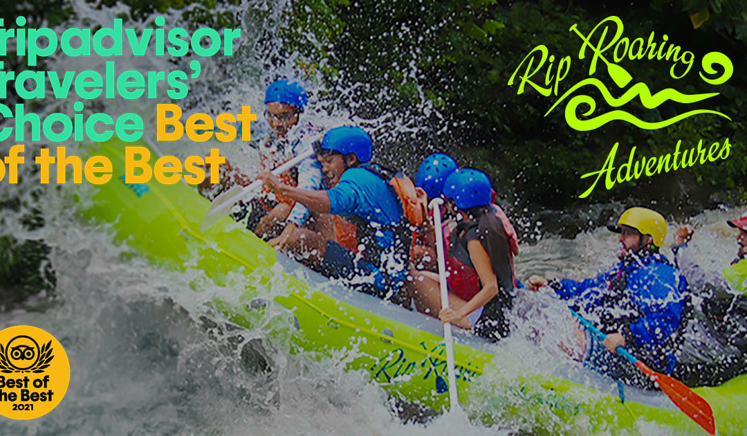 Rip Roaring Adventures Voted No. 1 Family-Friendly Experience In The World On Tripadvisor