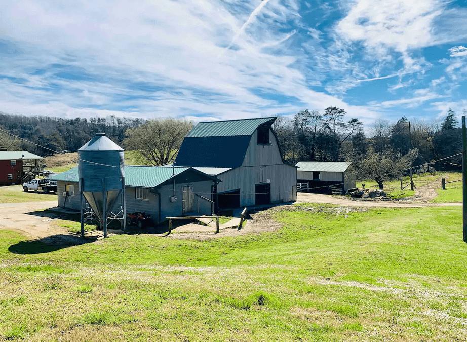 Family Farmhouse & Tiny Cabins Available Near Pigeon Forge TN